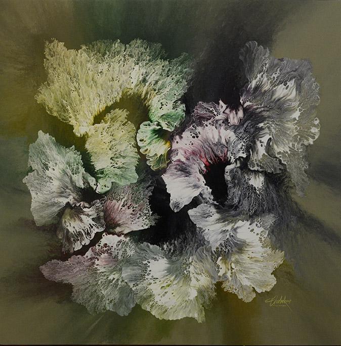 Limonium